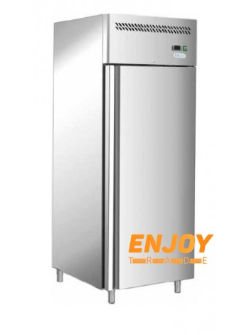 Морозильный шкаф Forcold G-GN650BT-FC